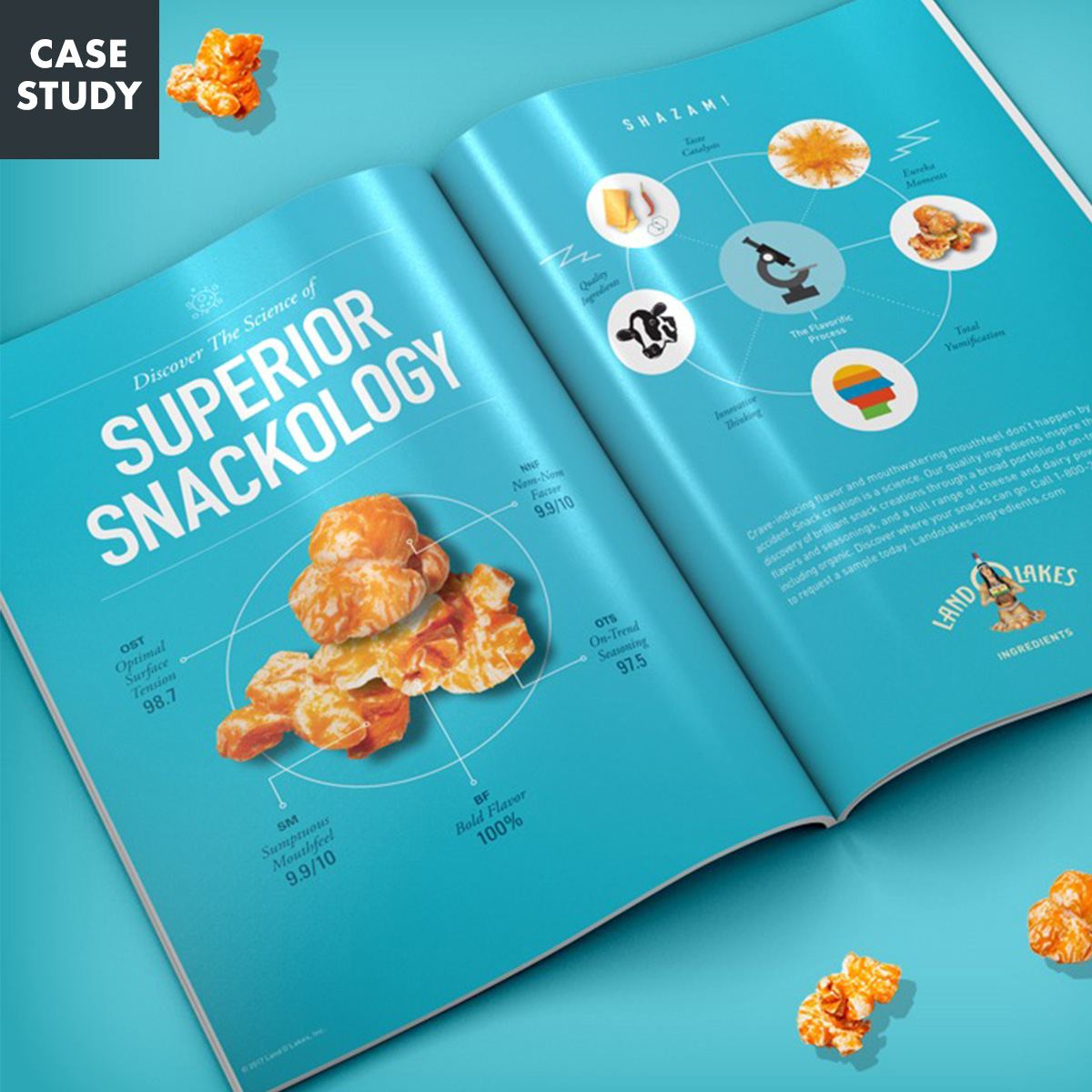 Case study: Land O'Lakes superior snackology